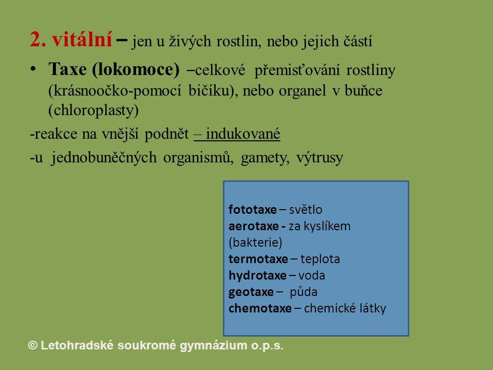 © Letohradské soukromé gymnázium o.p.s.2.