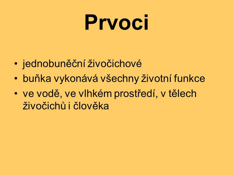 Slávinka