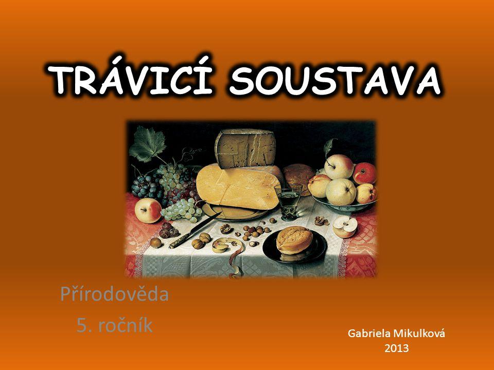 Přírodověda 5. ročník Gabriela Mikulková 2013
