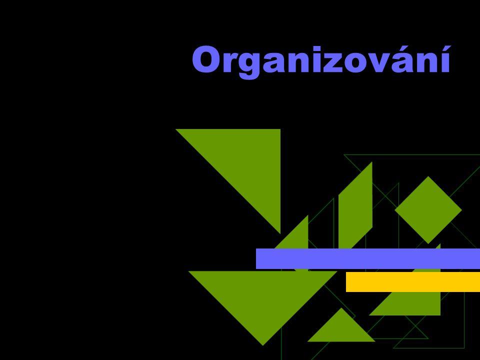 Maticové struktury Kombinují organizační vztahy vyplývající z příslušnosti k určitému útvaru a zároveň z účasti na nějaké, obvykle krátkodobé akci (projektu).