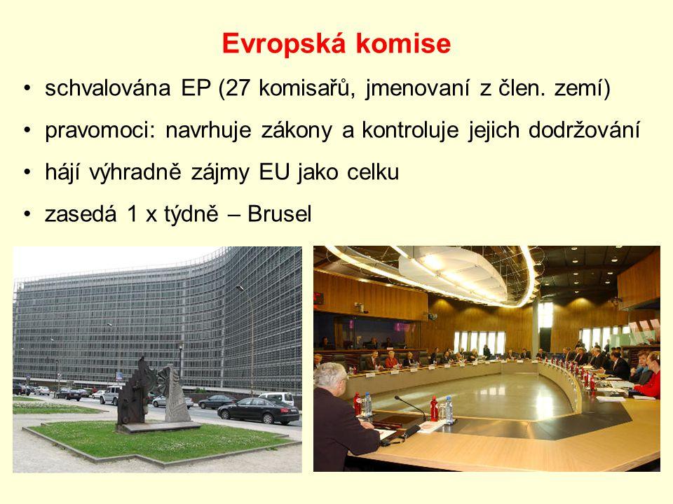 Evropská komise schvalována EP (27 komisařů, jmenovaní z člen.