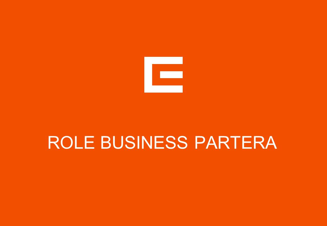 ROLE BUSINESS PARTERA