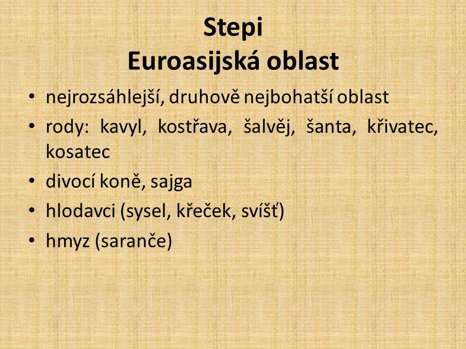 Stepi Euroasijská oblast nejrozsáhlejší, druhově nejbohatší oblast rody: kavyl, kostřava, šalvěj, šanta, křivatec, kosatec divocí koně, sajga hlodavci