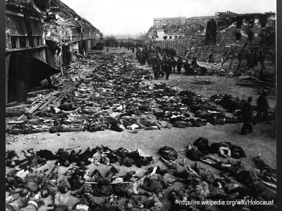Oběti byly nejdříve transportovány do průchozích táborů jako byly například v Terezíně nebo ve Varšavě Odtud byly převáženy do vyhlazovacích táborů, zde buď pracovali až do smrti nebo byly rovnou zabity v plynových komorách a spáleny v krematoriích Vězni měli různé označení podle toho o jakou skupinu (rasu) se jednalo Například – židé měli na šatech zašitou žlutou hvězdu