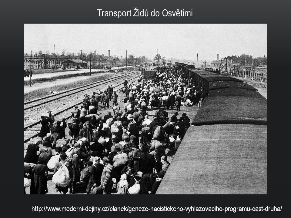 KONCETRAČNÍ TÁBORY Sloužily k hromadnému shromažďování lidí, kteří sem byli umisťováni bez řádného soudu Nacisté založili okolo 20 000 různých táborů Byly různé druhy táborů: pracovní tábory, tranzitní (průchozí) tábory, kde lidé pouze čekali na další transport, a také tábory vyhlazovací určené výhradně pro hromadné vraždění Největším a nejhrůznějším nacistickým táborem byla označována Osvětim Podle různých odhadů zde zemřelo 1,2 – 1,6 milionů lidí