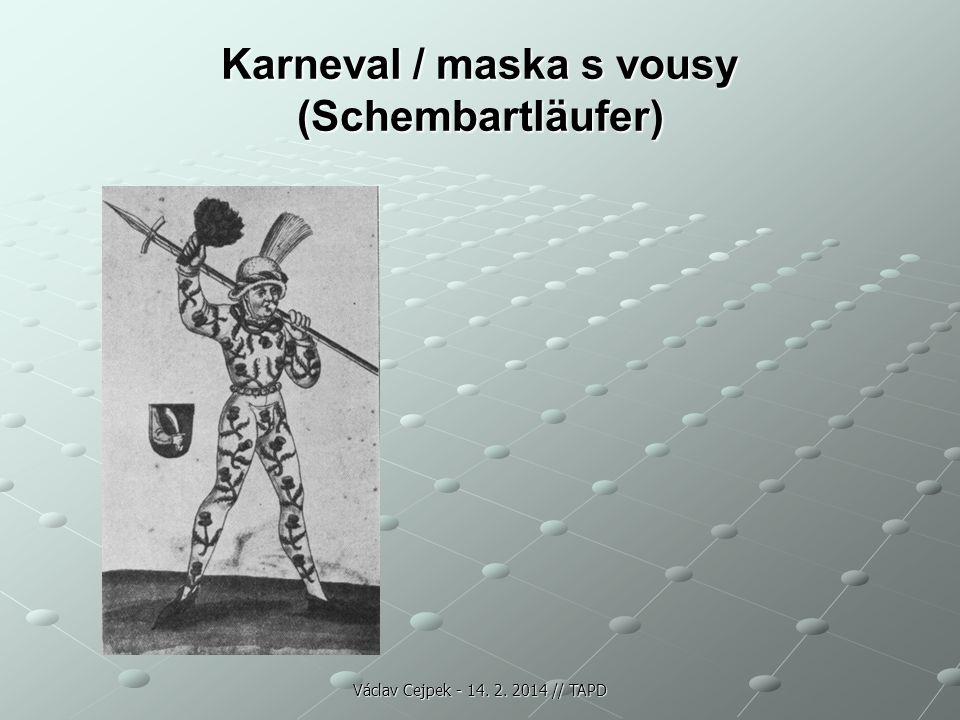 Karneval / maska s vousy (Schembartläufer) Václav Cejpek - 14. 2. 2014 // TAPD