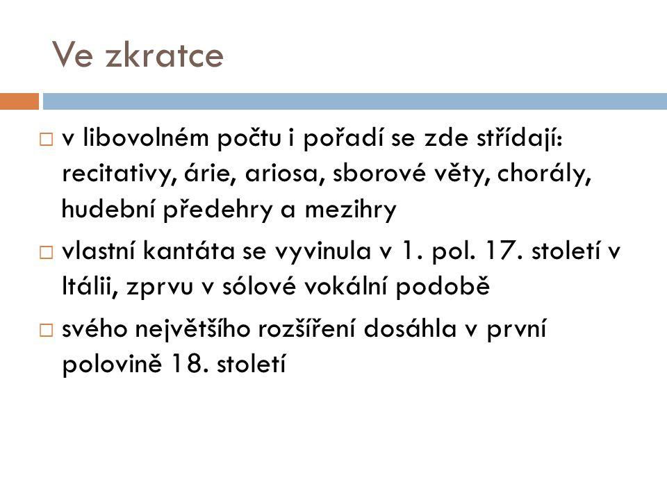 Historie  v 19.