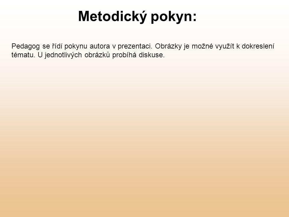 Metodický pokyn: Pedagog se řídí pokynu autora v prezentaci. Obrázky je možné využít k dokreslení tématu. U jednotlivých obrázků probíhá diskuse.