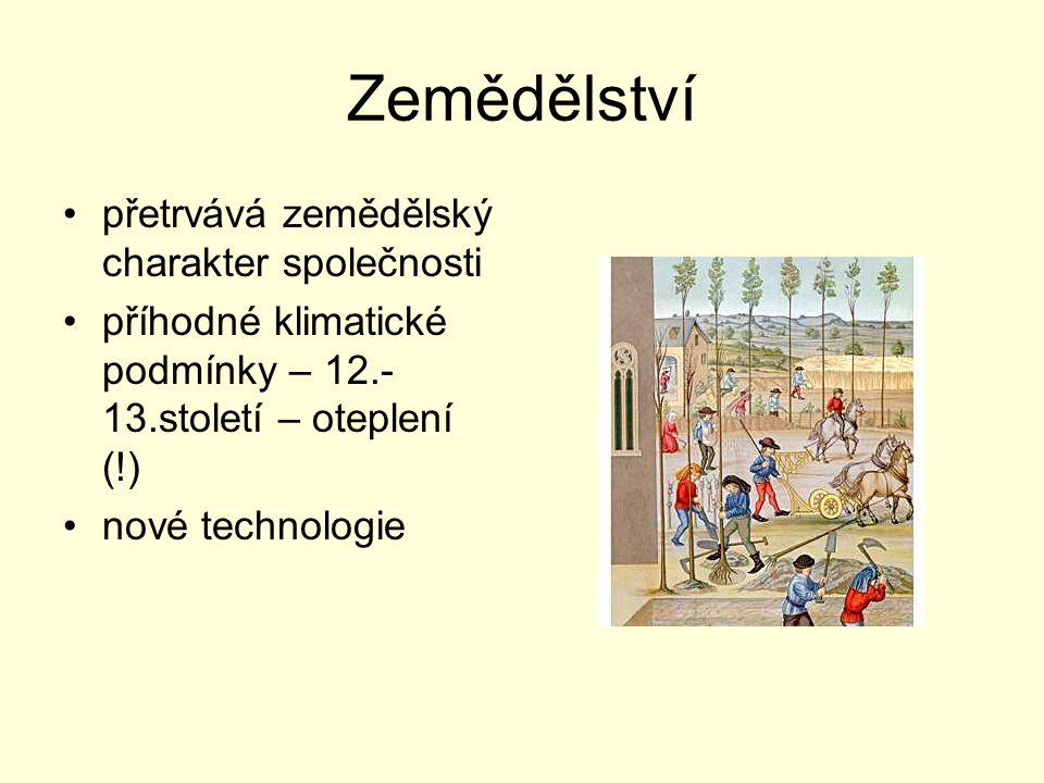 Zemědělství přetrvává zemědělský charakter společnosti příhodné klimatické podmínky – 12.- 13.století – oteplení (!) nové technologie