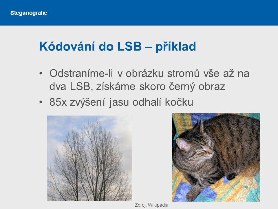 Steganografie Kódování do LSB – příklad Odstraníme-li v obrázku stromů vše až na dva LSB, získáme skoro černý obraz 85x zvýšení jasu odhalí kočku Zdroj: Wikipedia