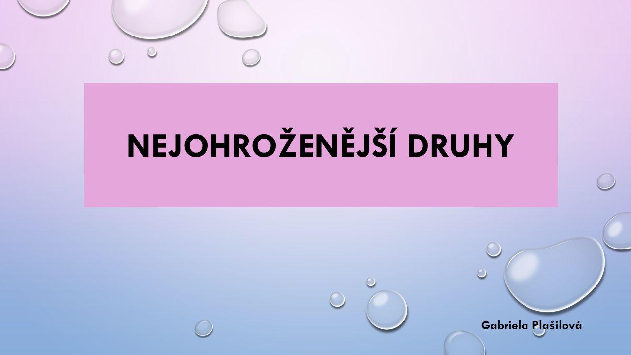 NEJOHROŽENĚJŠÍ DRUHY Gabriela Plašilová