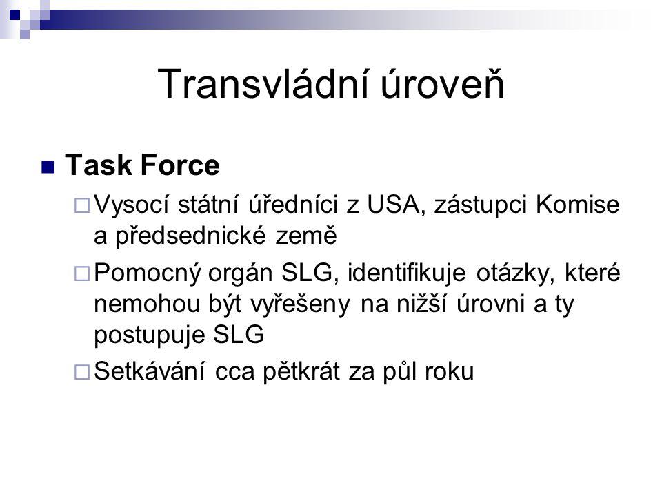 Transvládní úroveň Task Force  Vysocí státní úředníci z USA, zástupci Komise a předsednické země  Pomocný orgán SLG, identifikuje otázky, které nemo
