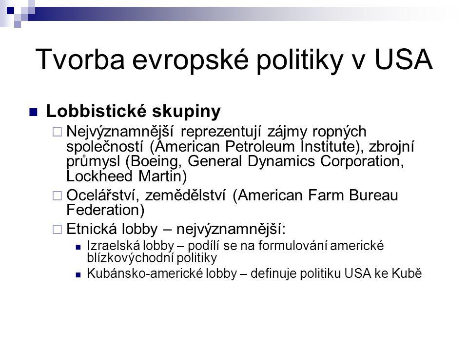 Tvorba evropské politiky v USA Lobbistické skupiny  Nejvýznamnější reprezentují zájmy ropných společností (American Petroleum Institute), zbrojní prů