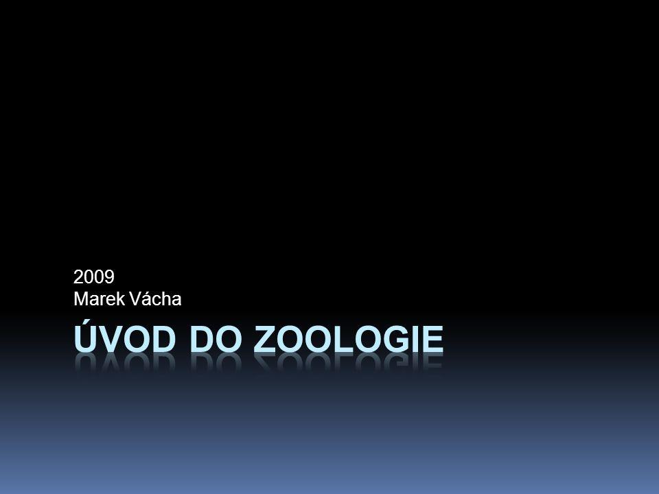 Život na Zemi můžeme rozdělit do pěti říší  Linné odlišil dvě říše: Plantae a Animalia  1969 R.