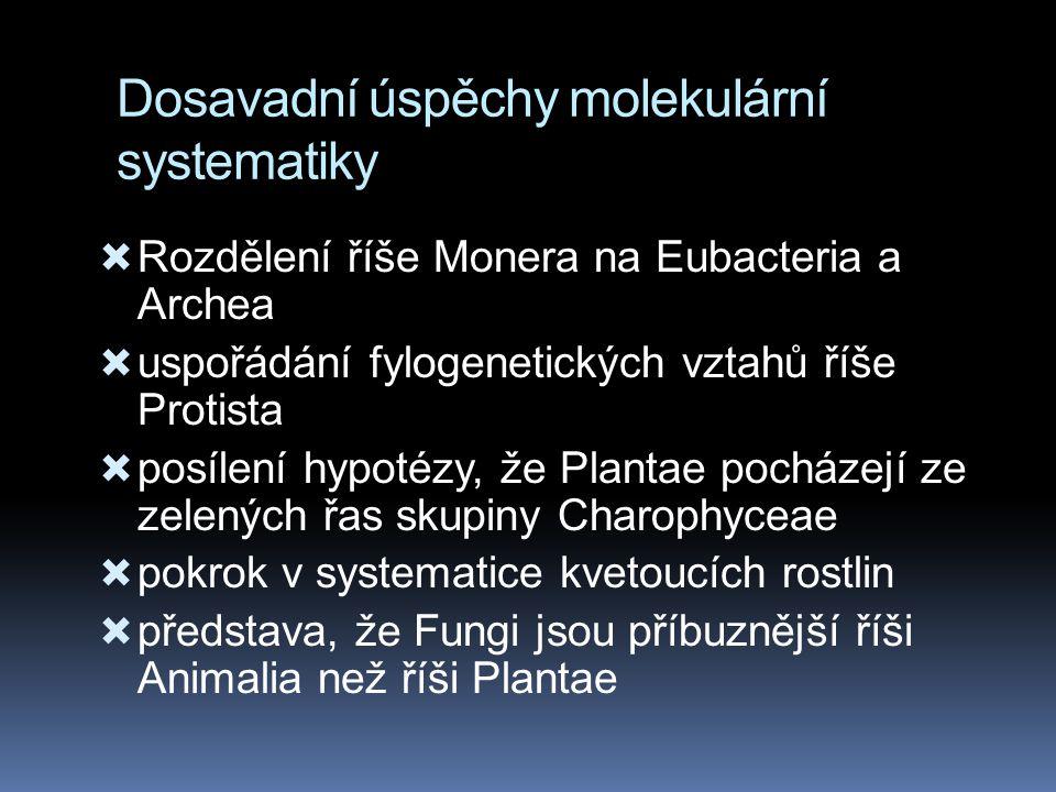 Dosavadní úspěchy molekulární systematiky  Rozdělení říše Monera na Eubacteria a Archea  uspořádání fylogenetických vztahů říše Protista  posílení hypotézy, že Plantae pocházejí ze zelených řas skupiny Charophyceae  pokrok v systematice kvetoucích rostlin  představa, že Fungi jsou příbuznější říši Animalia než říši Plantae