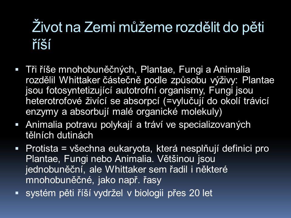Život na Zemi můžeme rozdělit do pěti říší  Tři říše mnohobuněčných, Plantae, Fungi a Animalia rozdělil Whittaker částečně podle způsobu výživy: Plantae jsou fotosyntetizující autotrofní organismy, Fungi jsou heterotrofové živící se absorpcí (=vylučují do okolí trávicí enzymy a absorbují malé organické molekuly)  Animalia potravu polykají a tráví ve specializovaných tělních dutinách  Protista = všechna eukaryota, která nesplňují definici pro Plantae, Fungi nebo Animalia.