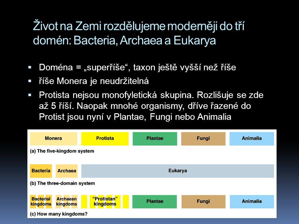 """Život na Zemi rozdělujeme moderněji do tří domén: Bacteria, Archaea a Eukarya  Doména = """"superříše , taxon ještě vyšší než říše  říše Monera je neudržitelná  Protista nejsou monofyletická skupina."""