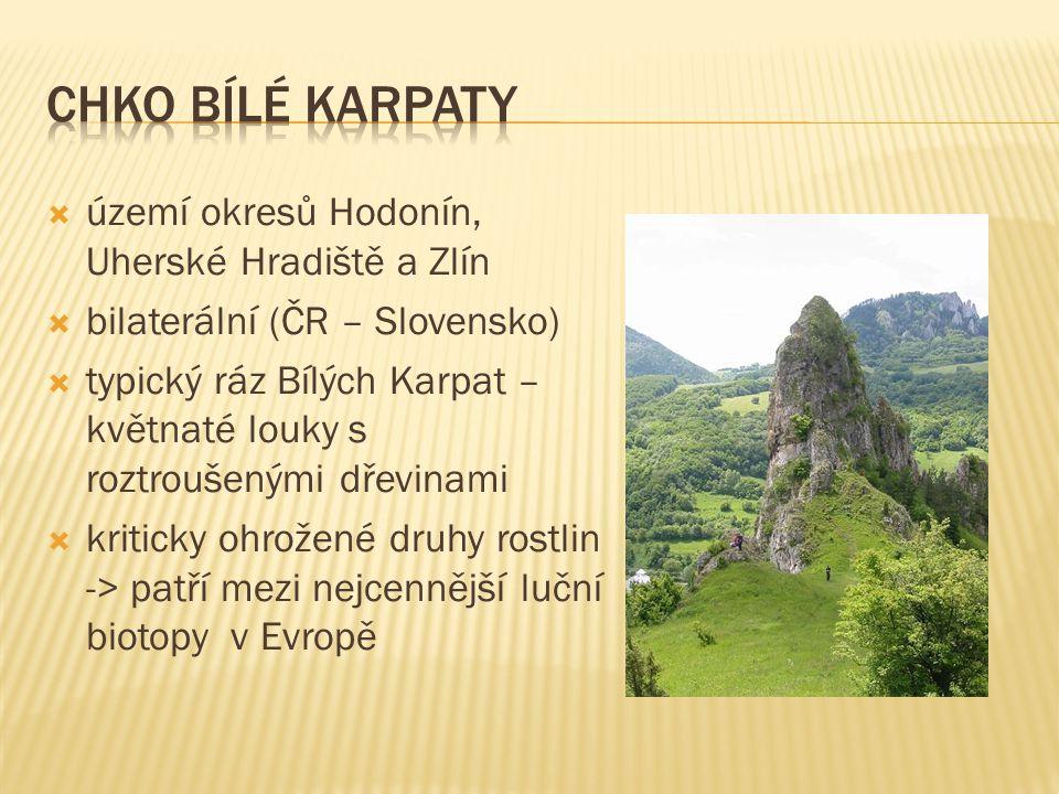  území okresů Hodonín, Uherské Hradiště a Zlín  bilaterální (ČR – Slovensko)  typický ráz Bílých Karpat – květnaté louky s roztroušenými dřevinami  kriticky ohrožené druhy rostlin -> patří mezi nejcennější luční biotopy v Evropě