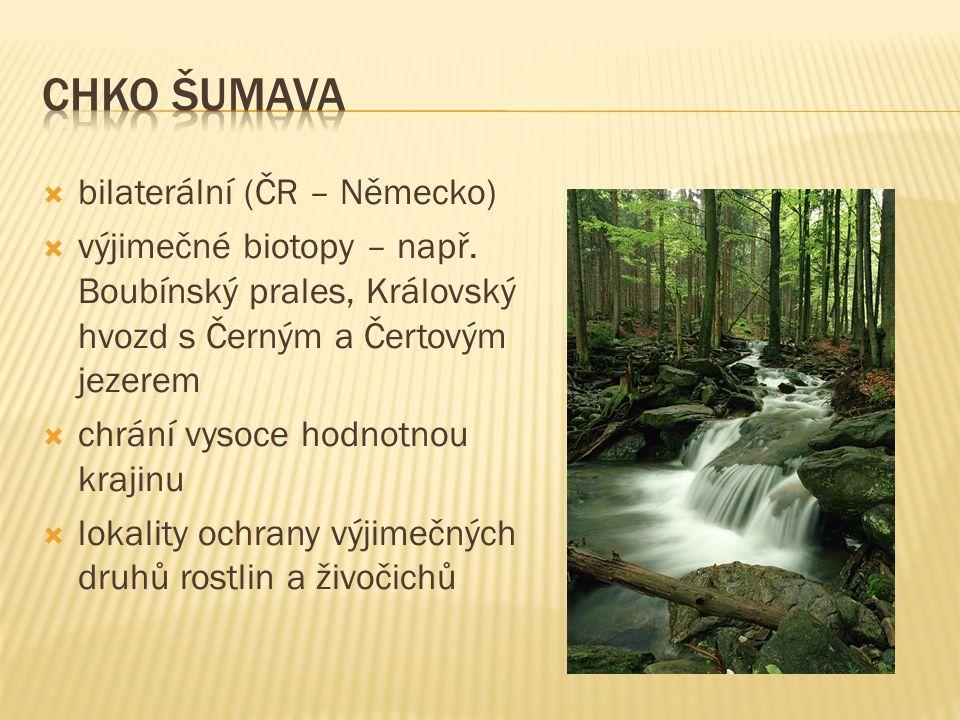  bilaterální (ČR – Německo)  výjimečné biotopy – např. Boubínský prales, Královský hvozd s Černým a Čertovým jezerem  chrání vysoce hodnotnou kraji