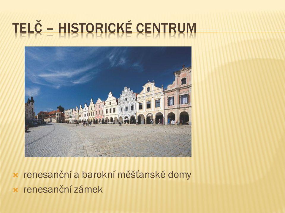  renesanční a barokní měšťanské domy  renesanční zámek