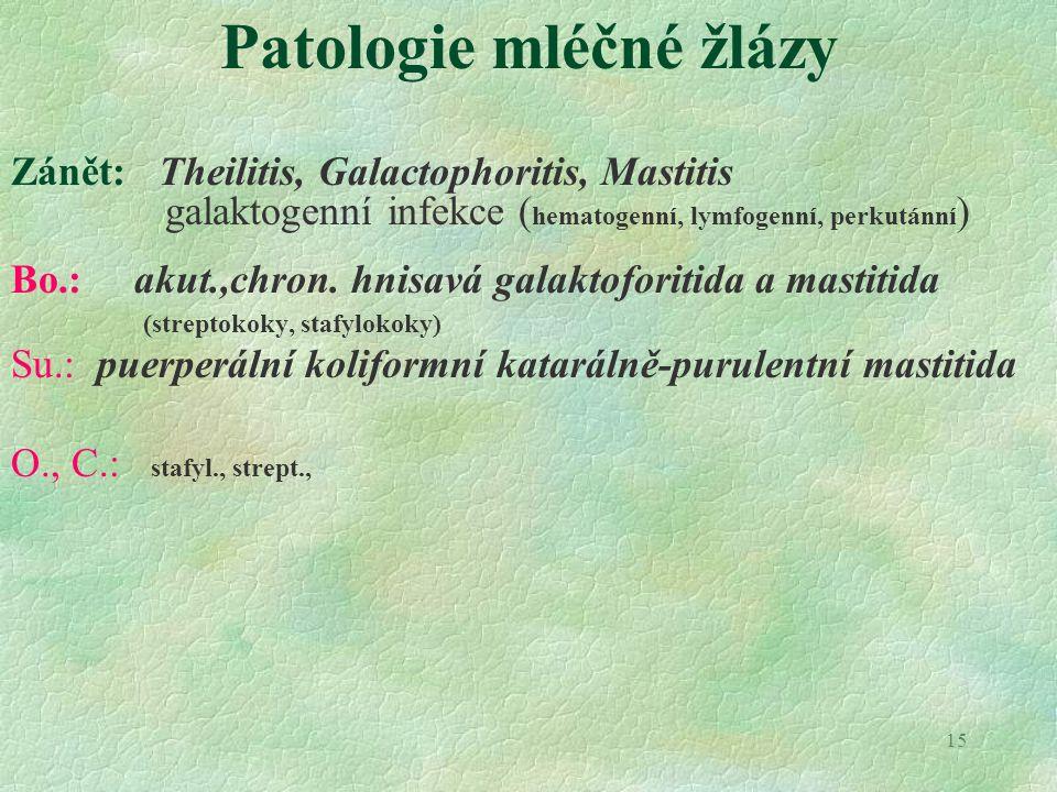 15 Patologie mléčné žlázy Zánět: Theilitis, Galactophoritis, Mastitis galaktogenní infekce ( hematogenní, lymfogenní, perkutánní ) Bo.: akut.,chron. h