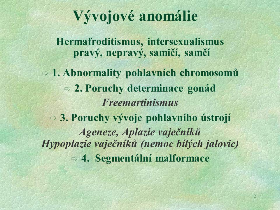 2 Hermafroditismus, intersexualismus pravý, nepravý, samičí, samčí  1. Abnormality pohlavních chromosomů  2. Poruchy determinace gonád Freemartinism