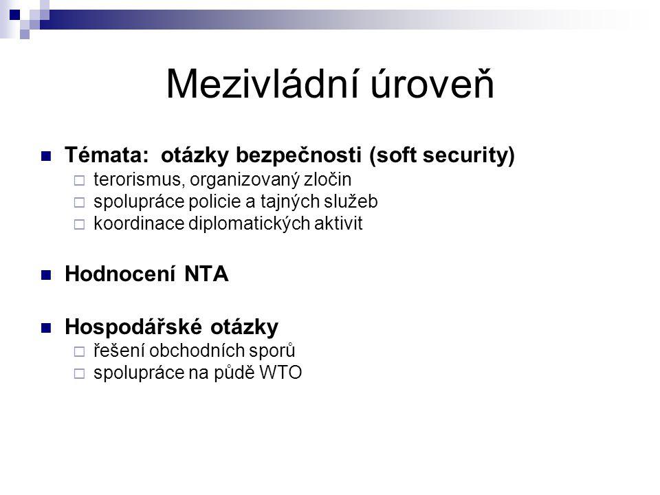 Mezivládní úroveň Témata: otázky bezpečnosti (soft security)  terorismus, organizovaný zločin  spolupráce policie a tajných služeb  koordinace diplomatických aktivit Hodnocení NTA Hospodářské otázky  řešení obchodních sporů  spolupráce na půdě WTO