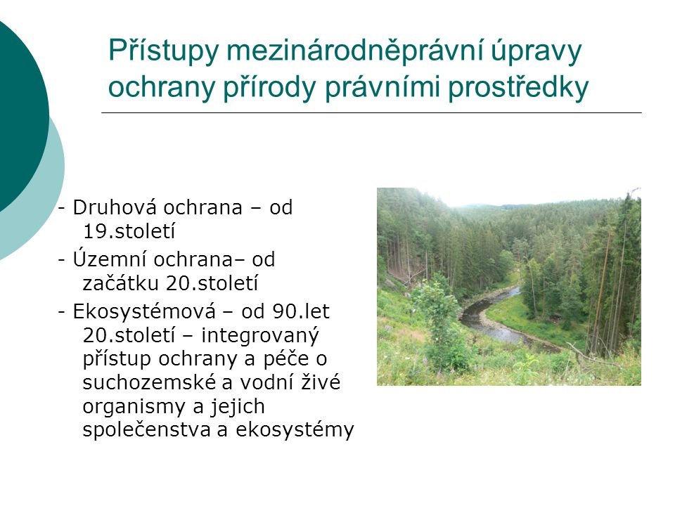 Přístupy mezinárodněprávní úpravy ochrany přírody právními prostředky - Druhová ochrana – od 19.století - Územní ochrana– od začátku 20.století - Ekos