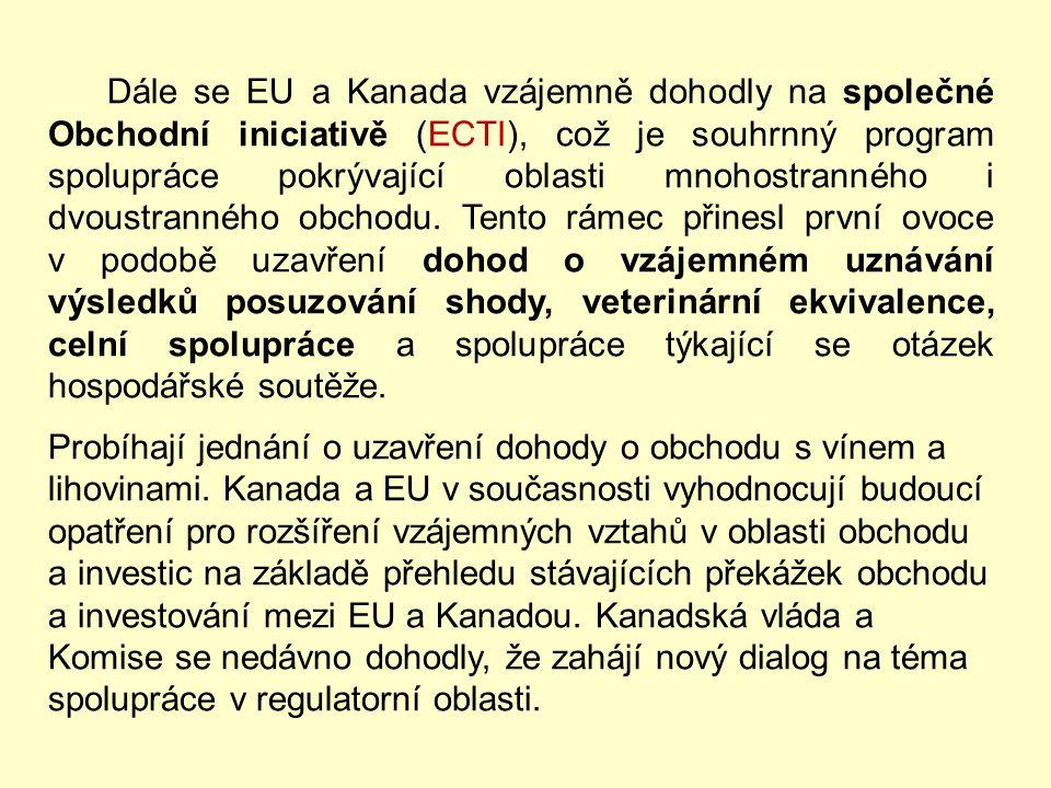 EU a USA se v roce 1999 dohodly na souboru principů k zajištění účinného systému včasného varování za účelem předcházení konfliktům a usnadnění jejich
