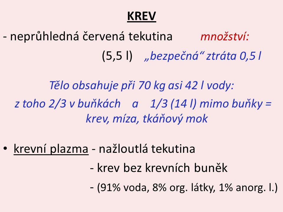 """KREV - neprůhledná červená tekutina množství : (5,5 l) """"bezpečná"""" ztráta 0,5 l Tělo obsahuje při 70 kg asi 42 l vody: z toho 2/3 v buňkách a 1/3 (14 l"""