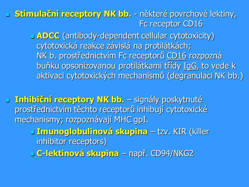 Stimulační receptory NK bb. - některé povrchové lektiny, Fc receptor CD16 Stimulační receptory NK bb. - některé povrchové lektiny, Fc receptor CD16 AD