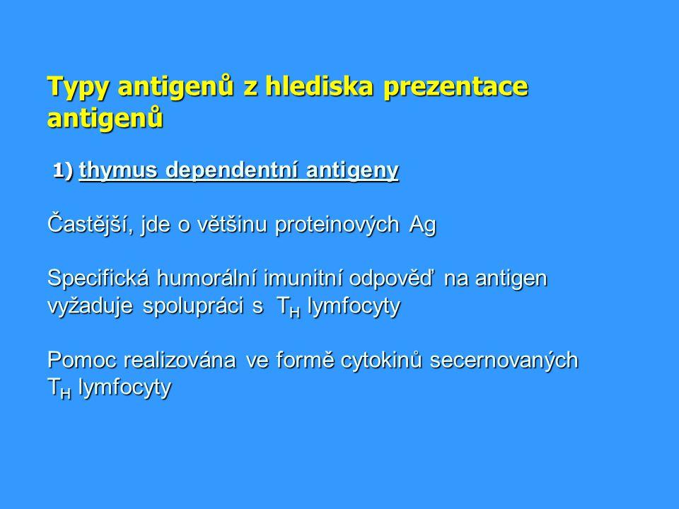 Funkce mastocytů obrana proti parazitárním infekcím obrana proti parazitárním infekcím za patologických okolností jsou zodpovědné za časný typ přecitlivělosti (imunopatologická reakce typu I) za patologických okolností jsou zodpovědné za časný typ přecitlivělosti (imunopatologická reakce typu I) uplatňují se při zánětu, při angiogenezi, při remodelaci tkání uplatňují se při zánětu, při angiogenezi, při remodelaci tkání regulace imunitní odpovědi regulace imunitní odpovědi