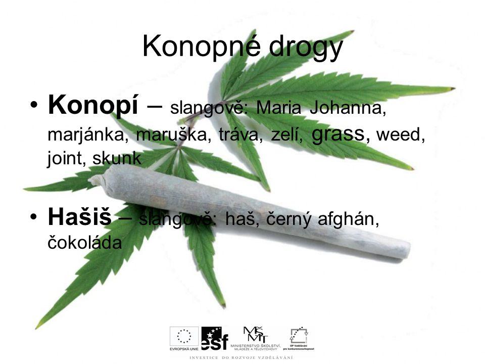 Konopné drogy Konopí – slangově: Maria Johanna, marjánka, maruška, tráva, zelí, grass, weed, joint, skunk Hašiš – slangově: haš, černý afghán, čokolád