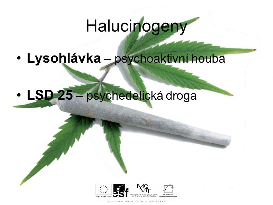 Halucinogeny Lysohlávka – psychoaktivní houba LSD 25 – psychedelická droga