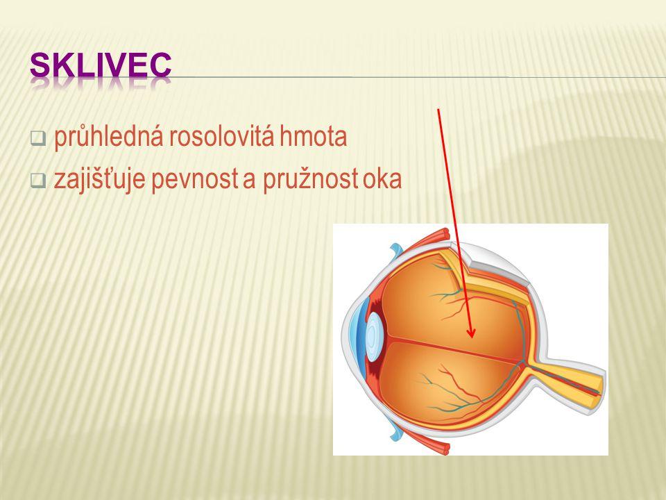  průhledná rosolovitá hmota  zajišťuje pevnost a pružnost oka