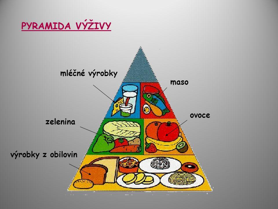 PYRAMIDA VÝŽIVY mléčné výrobky maso ovoce zelenina výrobky z obilovin