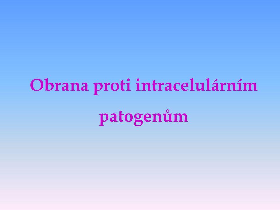 Obrana proti intracelulárním patogenům