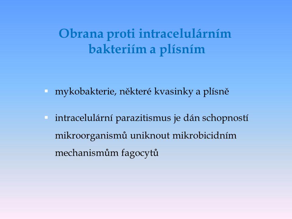 Obrana proti intracelulárním bakteriím a plísním  mykobakterie, některé kvasinky a plísně  intracelulární parazitismus je dán schopností mikroorgani