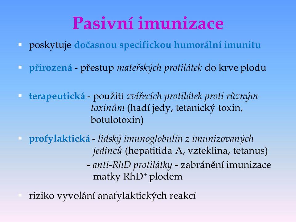 Pasivní imunizace  poskytuje dočasnou specifickou humorální imunitu  přirozená - přestup mateřských protilátek do krve plodu  terapeutická - použit