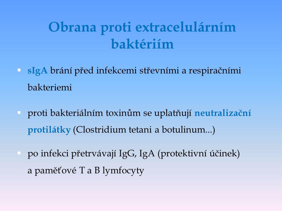  bakterie s polysacharidovým pouzdrem mohou vyvolat T-independentní produkci protilátek IgM ( po navázání na bakterii aktivují klasickou cestu komplementu)  bakteriální lipopolysacharid (LPS) stimuluje monocyty k uvolnění TNF, který může vyvolat septický šok  infekcemi extracelulárními bakteriemi jsou ohroženi především jedinci s poruchami funkce fagocytů, komplementu a tvorby protilátek Obrana proti extracelulárním baktériím