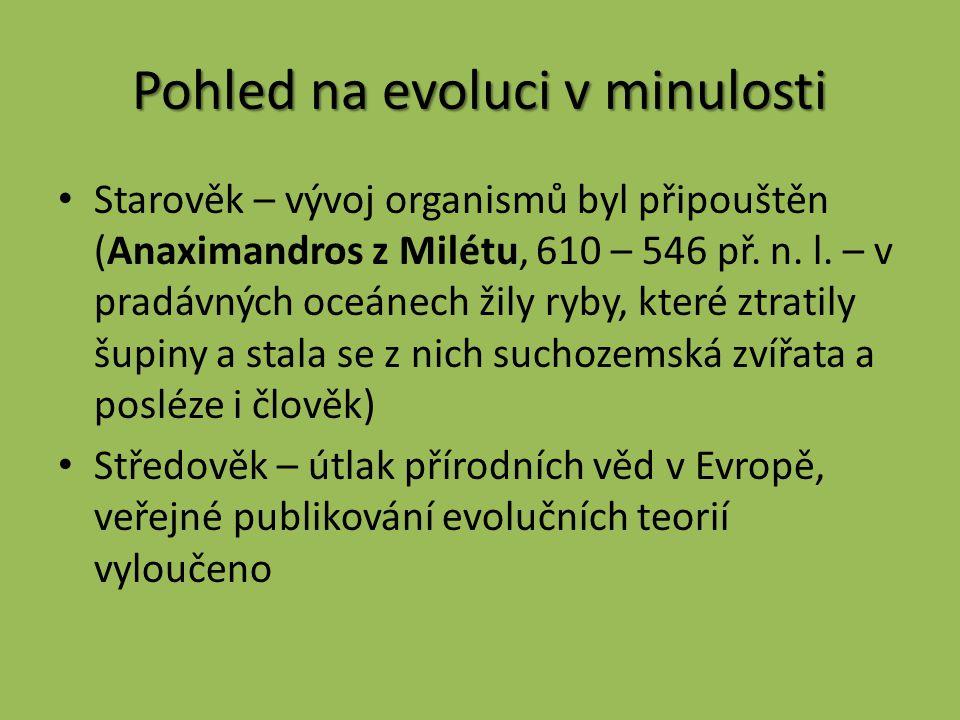 Pohled na evoluci v minulosti Starověk – vývoj organismů byl připouštěn (Anaximandros z Milétu, 610 – 546 př.