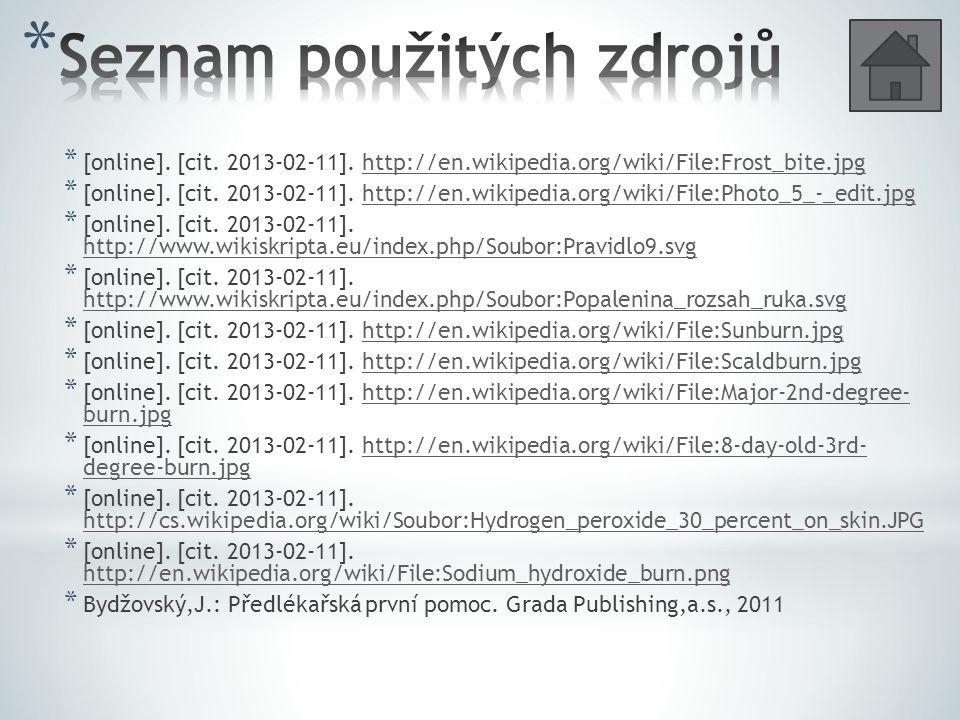 * [online].[cit. 2013-02-11].