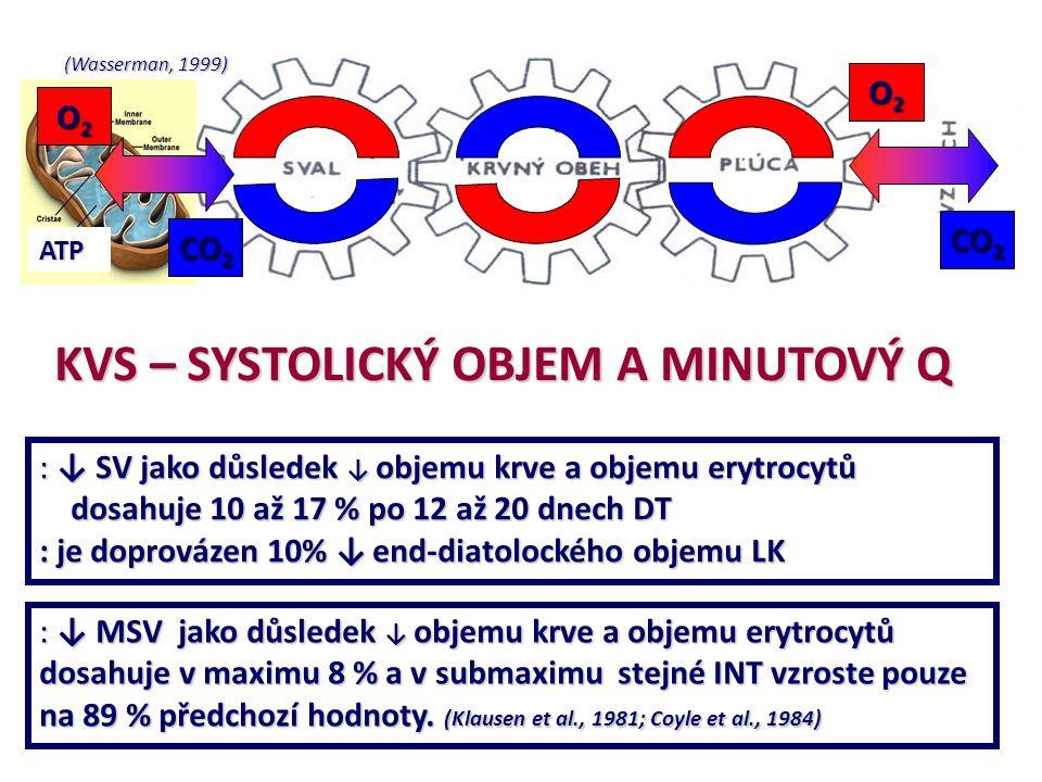 (Wasserman, 1999) ATP O2O2O2O2 O2O2O2O2 CO 2 KVS – SYSTOLICKÝ OBJEM A MINUTOVÝ Q : ↓ SV jako důsledek ↓ objemu krve a objemu erytrocytů dosahuje 10 až
