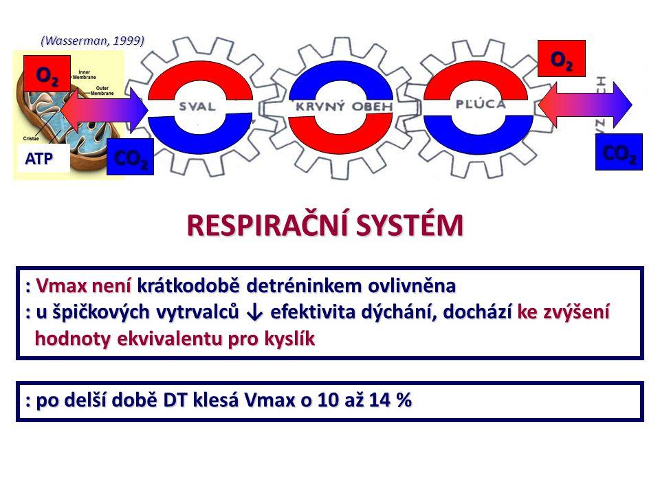 (Wasserman, 1999) ATP O2O2O2O2 O2O2O2O2 CO 2 RESPIRAČNÍ SYSTÉM : Vmax není krátkodobě detréninkem ovlivněna : u špičkových vytrvalců ↓ efektivita dých