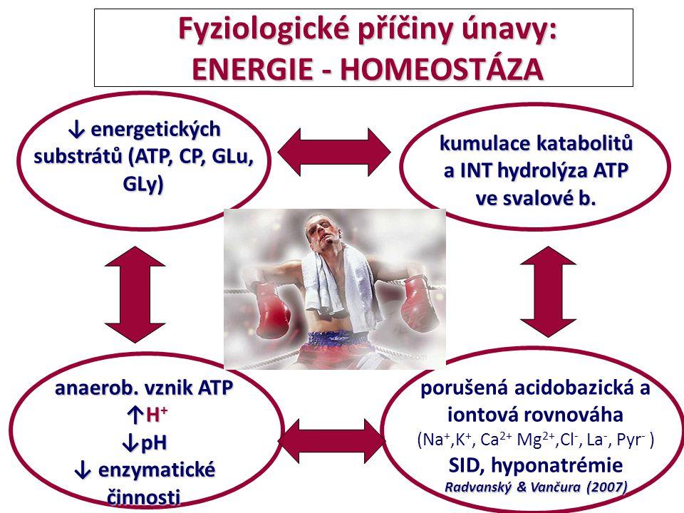 Fyziologické příčiny únavy: CNS - PŘENOS VZRUCHU : CNS, přenos vzruchu, synaptické spojení, mediátory : CNS, přenos vzruchu, synaptické spojení, mediátory