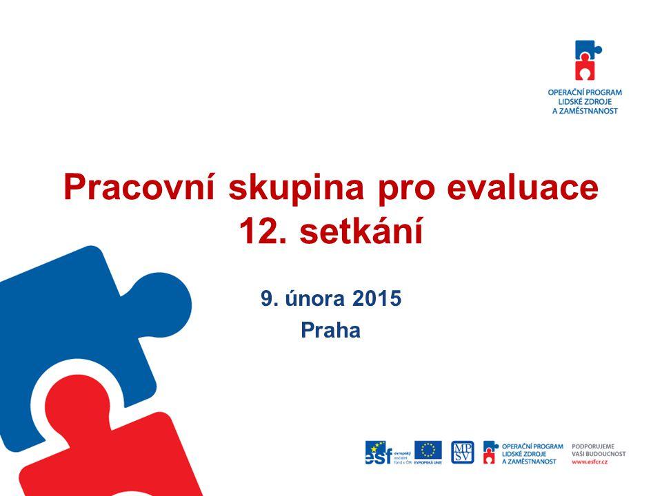 Pracovní skupina pro evaluace 12. setkání 9. února 2015 Praha