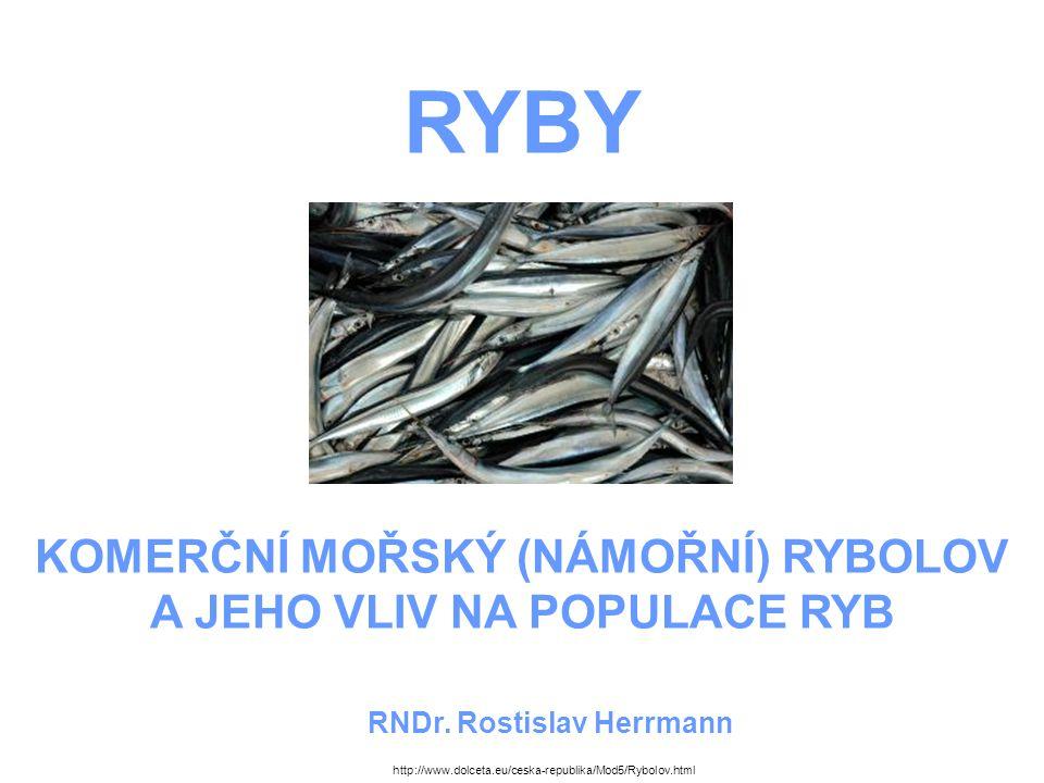 RYBY KOMERČNÍ MOŘSKÝ (NÁMOŘNÍ) RYBOLOV A JEHO VLIV NA POPULACE RYB RNDr.