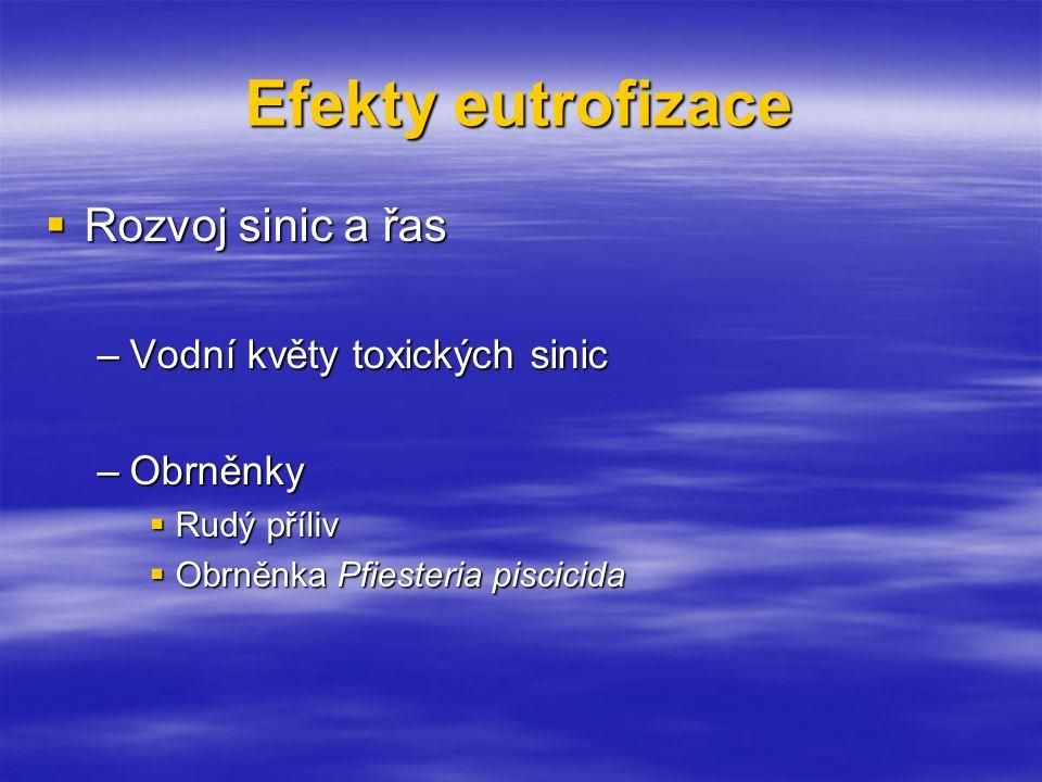 Efekty eutrofizace  Rozvoj sinic a řas –Vodní květy toxických sinic –Obrněnky  Rudý příliv  Obrněnka Pfiesteria piscicida