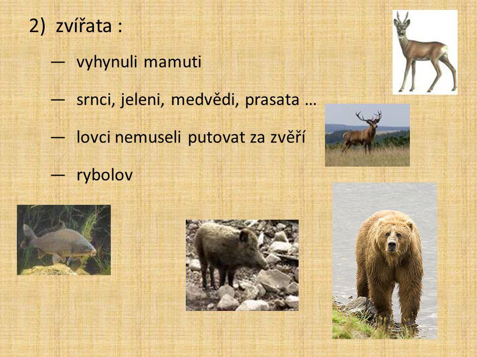 2)zvířata : —vyhynuli mamuti —srnci, jeleni, medvědi, prasata … —lovci nemuseli putovat za zvěří —rybolov