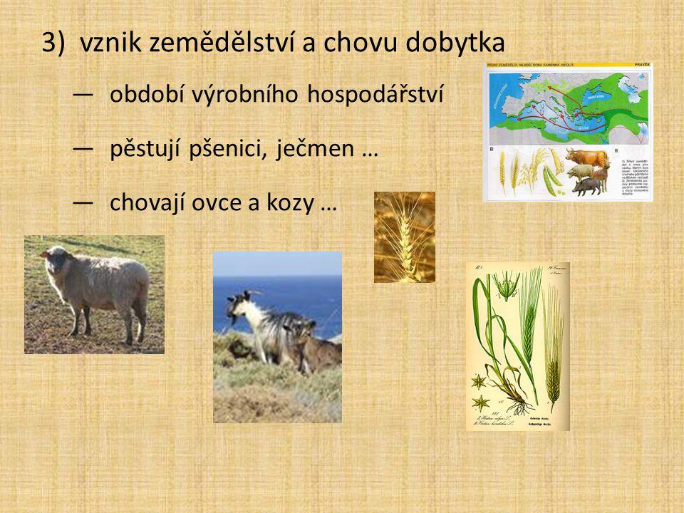 3)vznik zemědělství a chovu dobytka —období výrobního hospodářství —pěstují pšenici, ječmen … —chovají ovce a kozy …